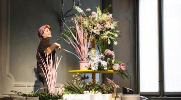 Sfumature di Cipria: la magia dei fiori e l'arte del floral design
