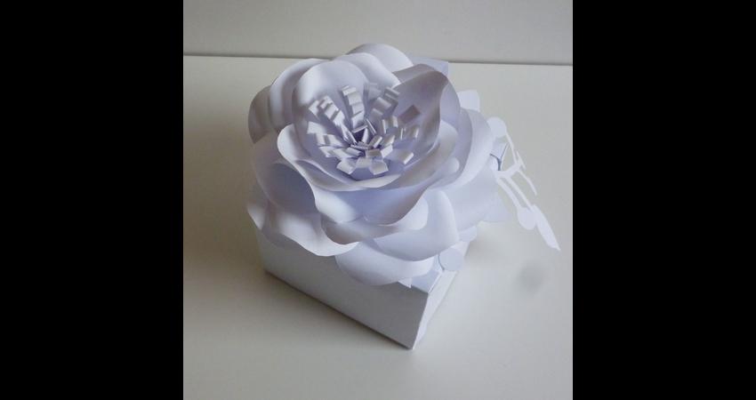 daniela-paper-wedding-1.jpg