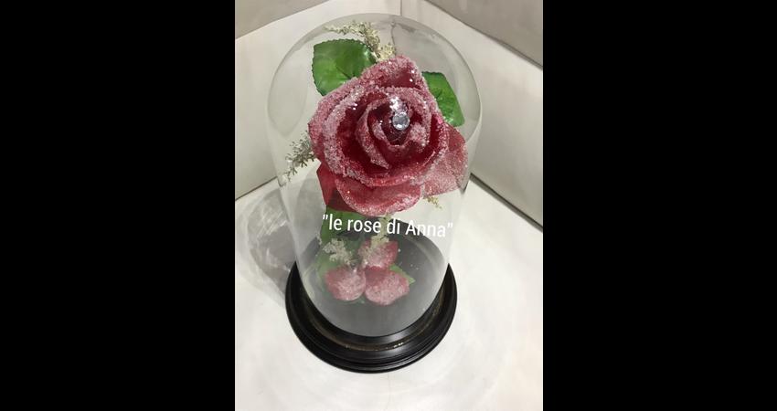 Le-rose-di-Anna-15.jpeg